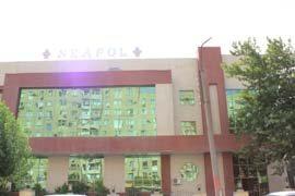Neapol Saray
