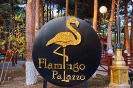 Flamingo Palazzo - 8KM